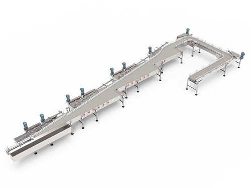 Product, Case & Pallet Conveyor